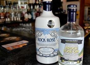 Bottles-of-Gin